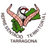 representacion teritorial